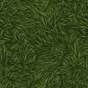 grass-texture (51)
