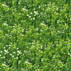 grass-texture (53)