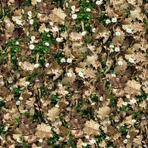 grass-texture (61)