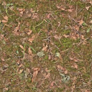 grass-texture (73)