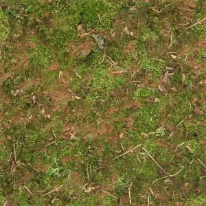 grass-texture (80)