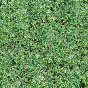 grass-texture (83)