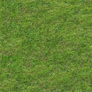 grass-texture (93)