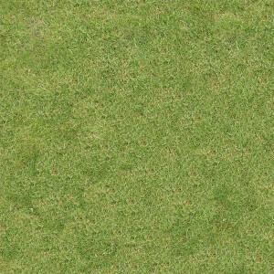 grass-texture (99)