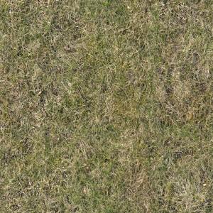 ground-texture (12)