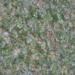 ground-texture (15)