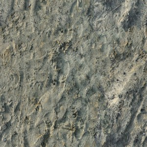 ground-texture (28)