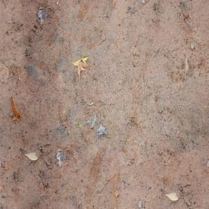 ground-texture (34)