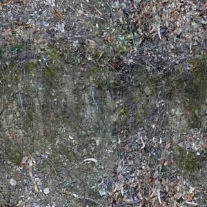 ground-texture (37)