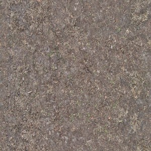ground-texture (5)