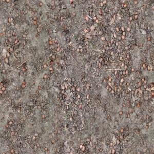 ground-texture (7)