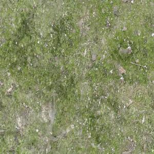 ground-texture (9)