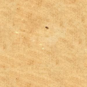 paper-texture (124)