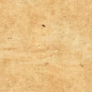 paper-texture (66)
