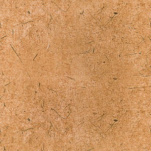 paper-texture (67)