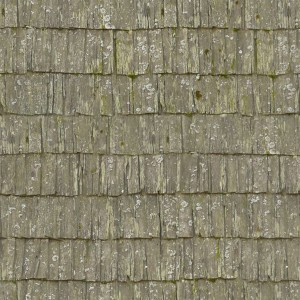 roof-texture (14)