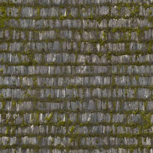 roof-texture (44)