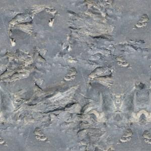 rubber-texture (19)