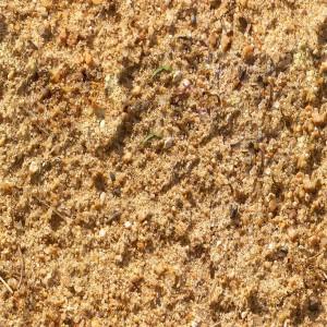 sand-texture (34)