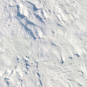 snow-texture (34)
