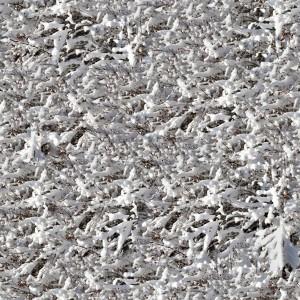 snow-texture (51)