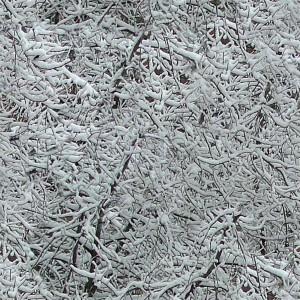 snow-texture (55)