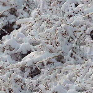 snow-texture (7)