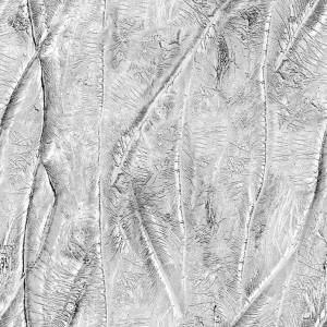 stucco-texture (86)