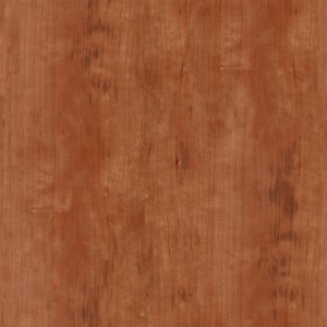 wood-texture (21)