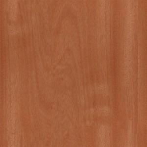 wood-texture (25)