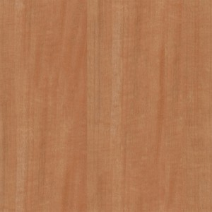 wood-texture (27)