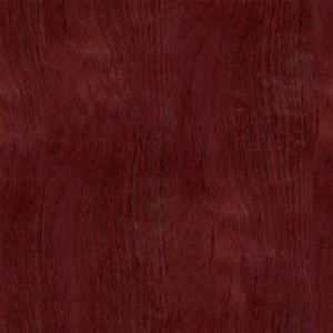wood-texture (28)