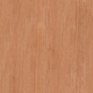 wood-texture (29)