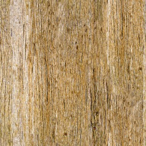 wood-texture (32)