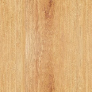 wood-texture (33)