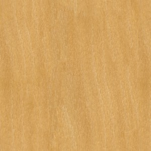 wood-texture (45)