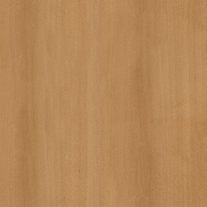 wood-texture (49)
